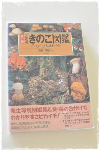 9.17きのこ図鑑.JPG
