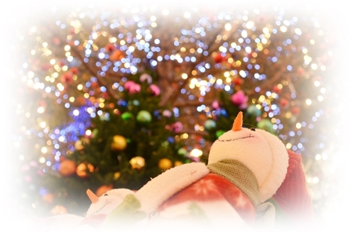 クリスマス特集用.JPG