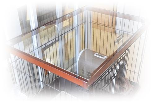 犬の屋根NEW.JPG