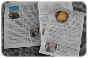 飛騨 ぽろたん 紙.JPG
